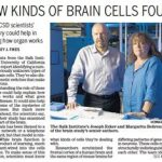 labnews-braincellsfound